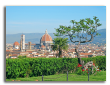 Италия. Флоренция. Beautiful panoramic view of Florence, Italy . Фото swisshippo - Depositphotos