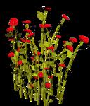Lug_Grass_Flower (37).png