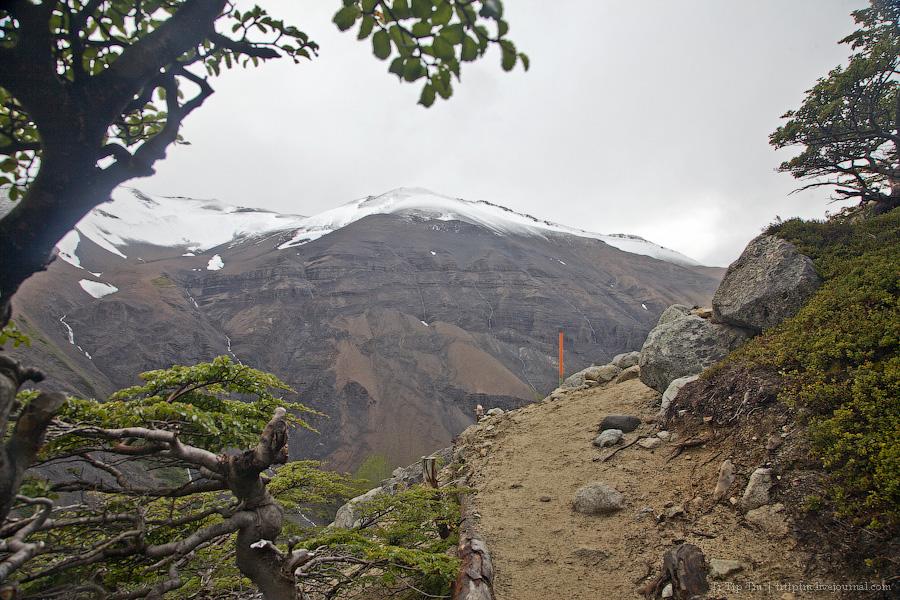 5. Восхождение к Голубым Башням и животный мир Южной Патагонии