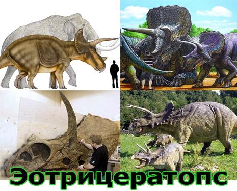 Самые большие животные в мире, существовавшие на земле (фото 8)