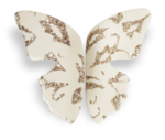 natali_everyday_ butterfly-sh.png