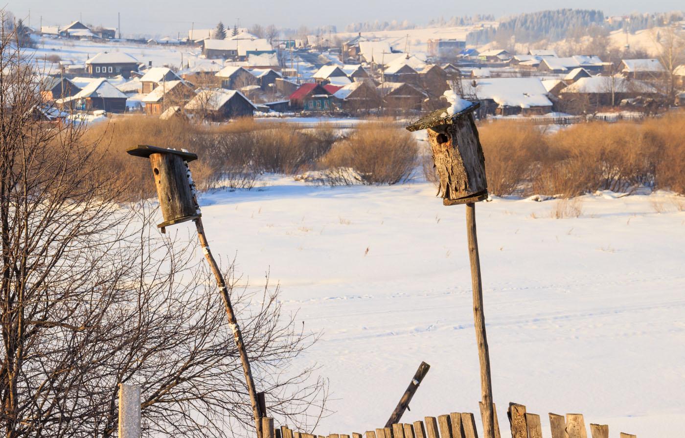 Фотография 28. Репортаж на зеркалку Canon EOS. Тестирование фотоаппарата. 1/80, +0.67, 11.