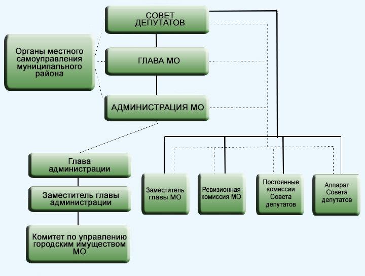 Структура органов местного