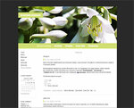 Дизайн для ЖЖ: Белые колокольчики (S2). Дизайны для livejournal. Дизайны для Живого журнала. Оформление ЖЖ. Бесплатные стили. Авторские дизайны для ЖЖ