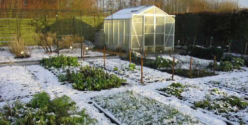 огород зимой, подготовка к посеву, уход за садом в зимние месяцы