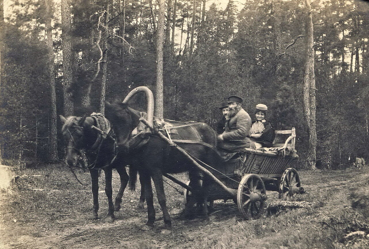 1906. Подбродзе. Русско-американская идиллия в польском лесу