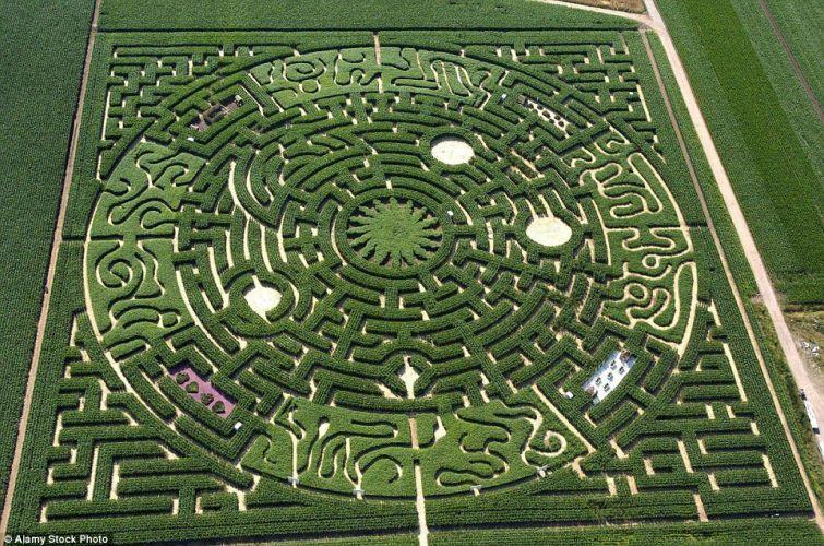 7. Реиньяк-Сюр-Эндр, Франция. Летний лабиринт из кукурузы или подсолнечника