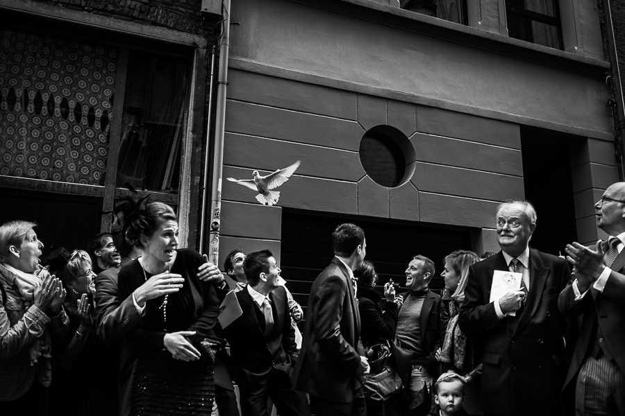 © Joshua D'hondt, Joshua D'hondt Photography, Antwerpen, Belgium