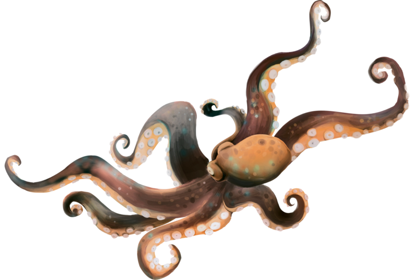 emeto_TheScaryPirates_octopus.png