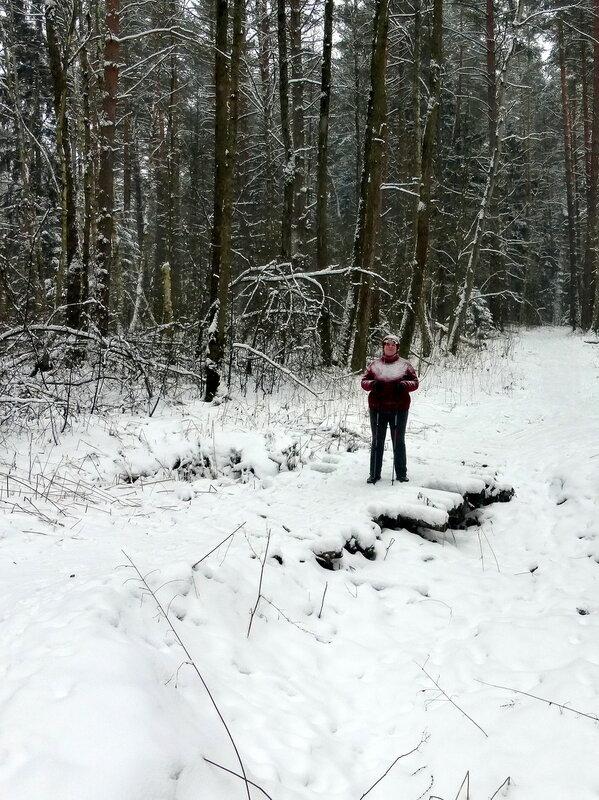 На мостике в снегопад