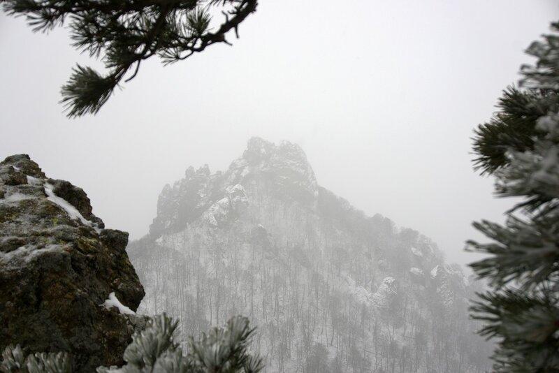 Индюк в снегопад