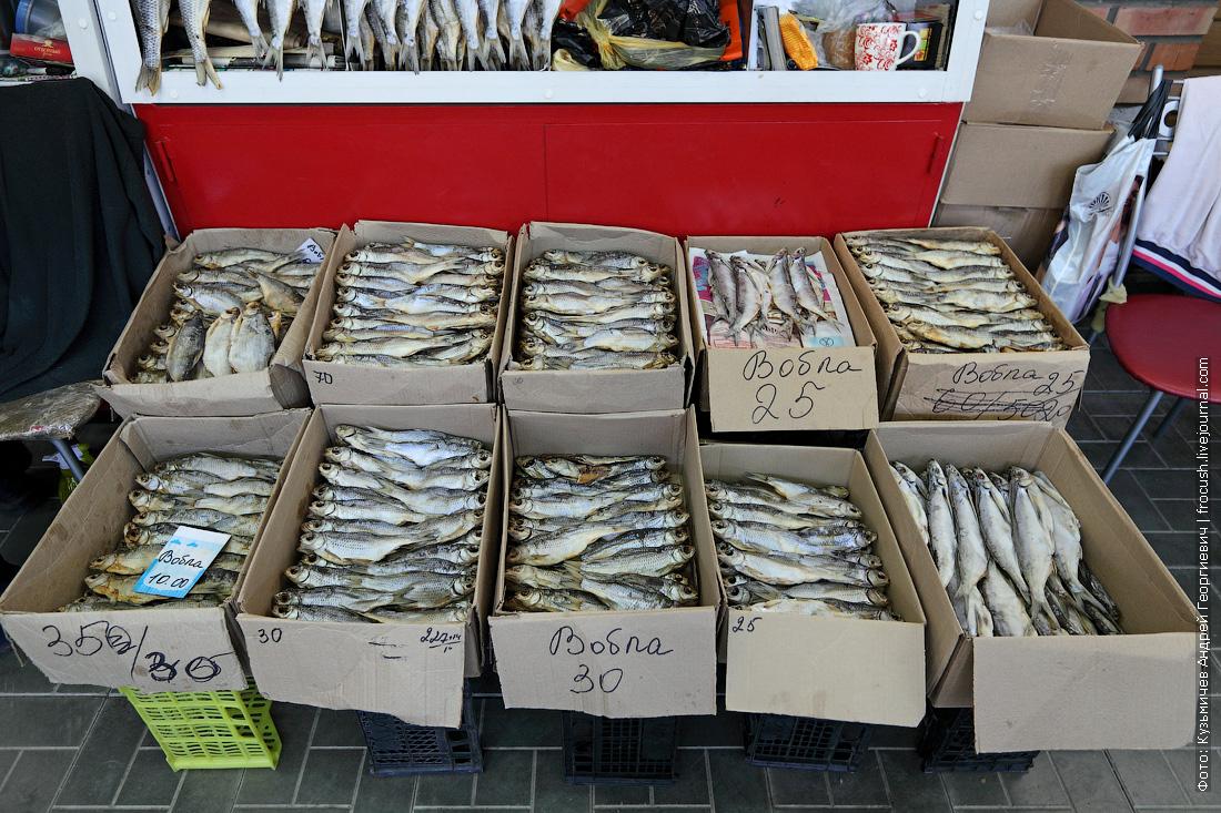 вобла фото Астраханский рыбный рынок