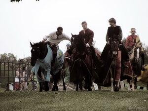 Лошади рыцарей
