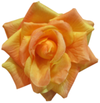 feli_gs_fabric flower2.png