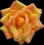 feli_gs_fabric flower2.png