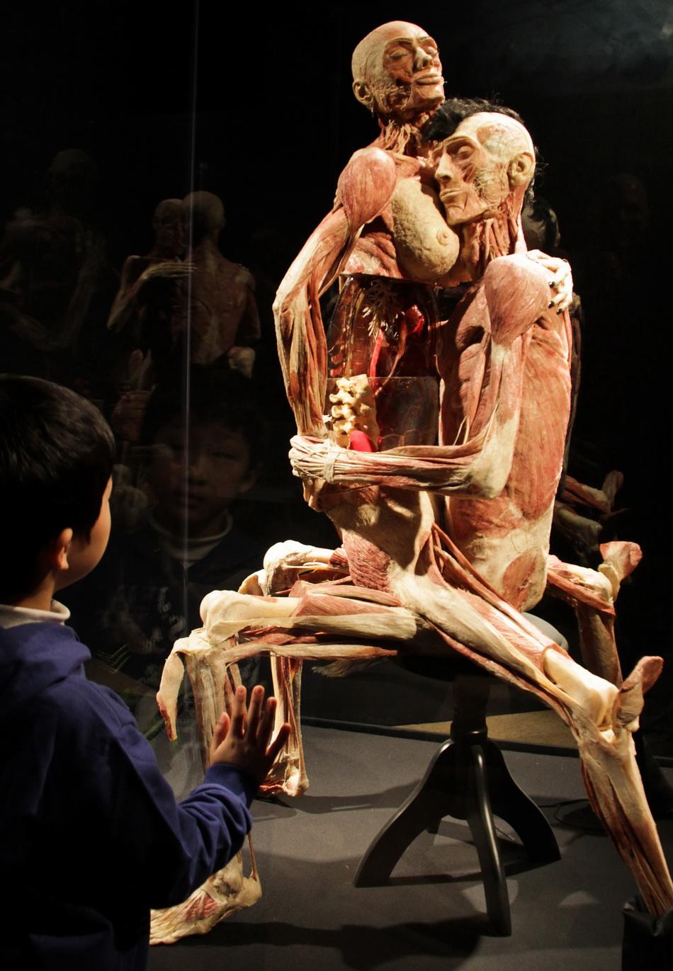 Тело человека искусство секса