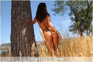http://img-fotki.yandex.ru/get/6433/169790680.2/0_9d3a5_57b1192b_orig.jpg