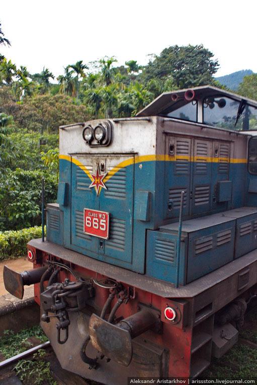 Шри-Ланка_Железная дорога_23