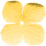aw_picnic_flower 1 yellow.png