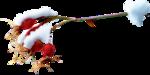 ldavi-feathersandmittens-snowyrosehip4.png