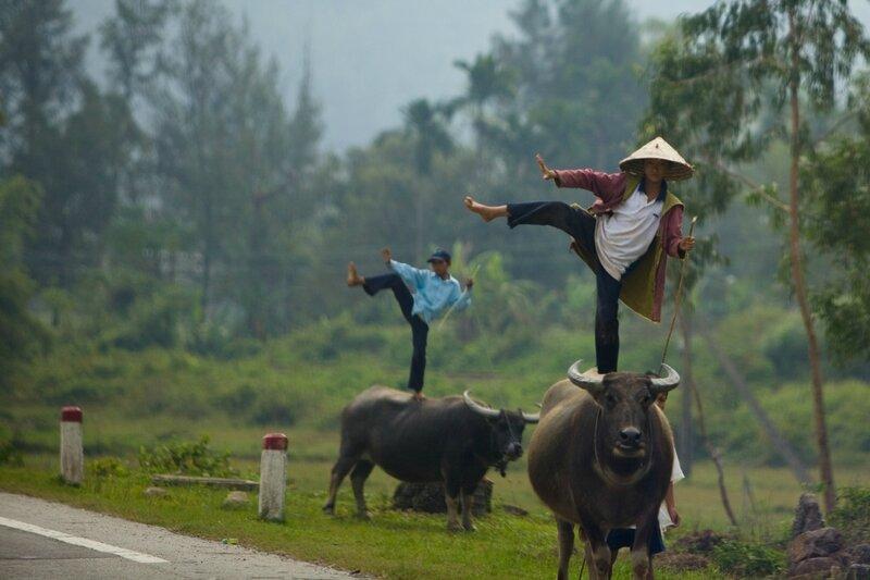 интерьер поздравление от вьетнамцев смешное симферополе его