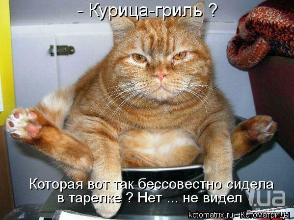 http://img-fotki.yandex.ru/get/6433/59709858.31/0_f6631_8a92ebea_XL.jpg