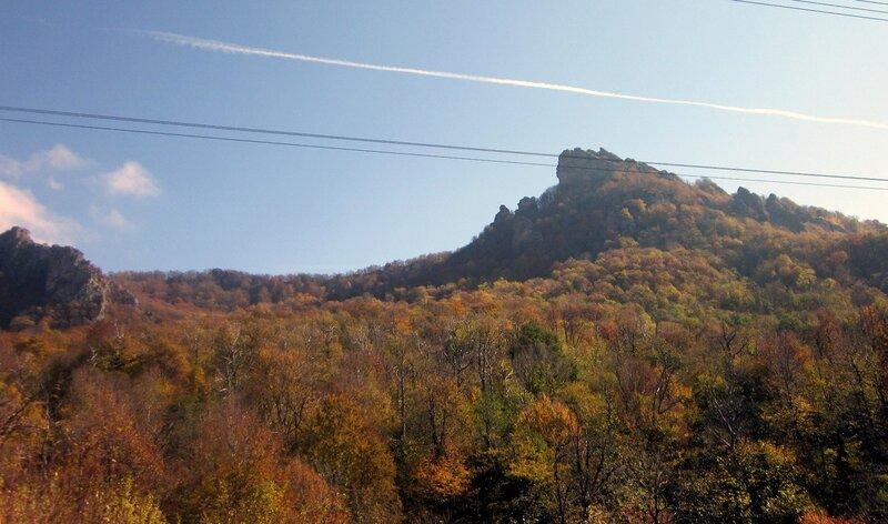 Фотограф Виктор Шалтаев, Индюк, Ноябрь 2011, г Кавказ