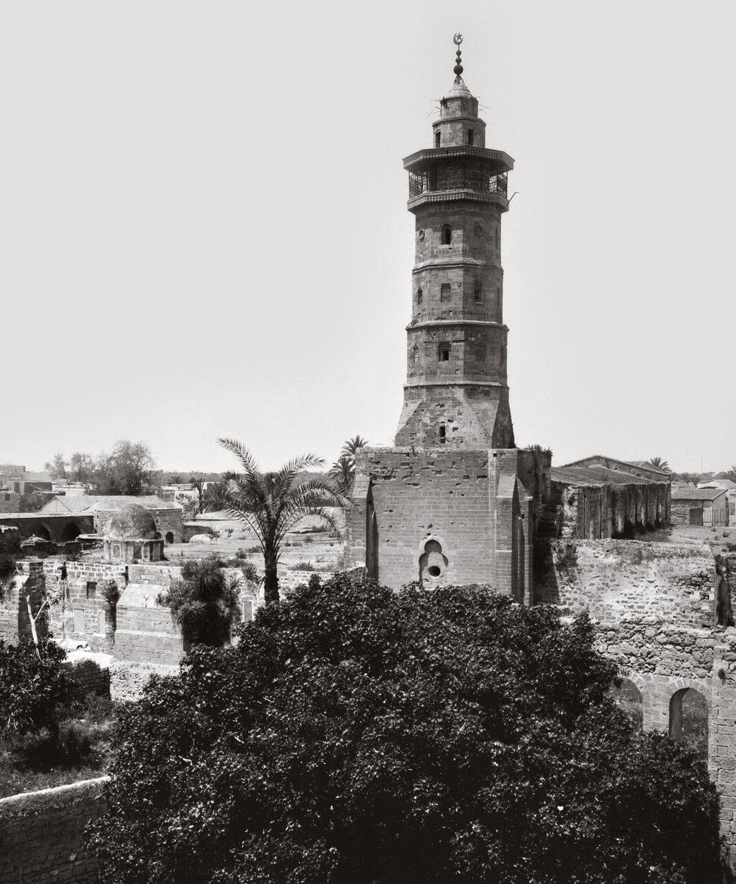 Вид Газы с восточной стороны. Палестина. 1900-1926 г.