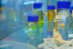 Полиуретановые катализаторы и добавки. Стенд компании Вальтер Хеми ООО