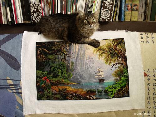 Котик для масштаба