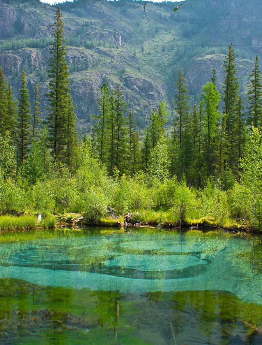 Гейзеровое озеро алтай - 18b8c