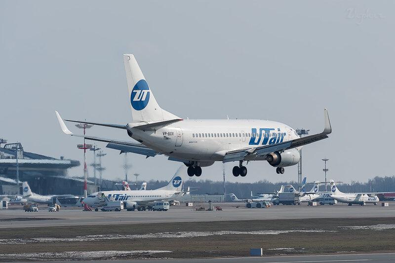 Boeing 737-524 (VP-BXV) ЮТэйр DSC_9597