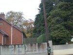 Северная Ирланлия 28/10/2012 дорога Белфаст-Буковая аллея-Мостик-Камни