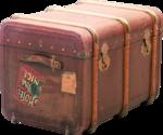 ldavi-wheretonowdreamer-luggage1a.png