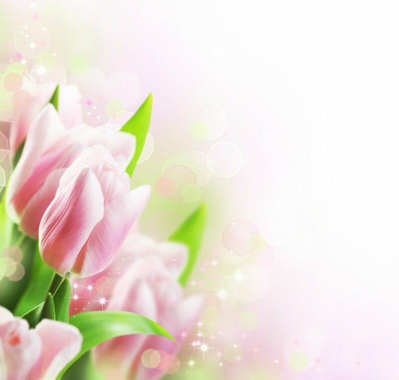 Tulips Spring floral design