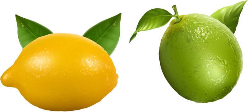Fruits а.png