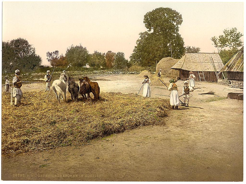 Босния в 1890-1900 годах. 0_8439d_a614d5d7_orig
