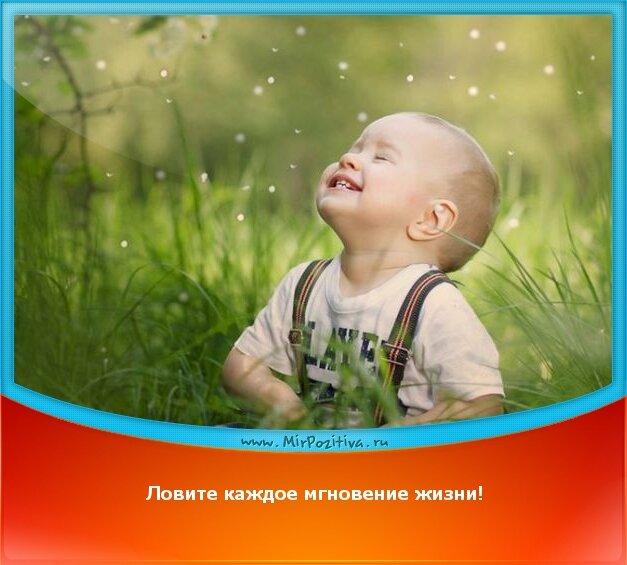 Позитивчик: Ловите каждое мгновение жизни!