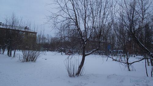 Фотография Инты №2776  Гагарина 15 и Геологическая 4 31.01.2013_13:23