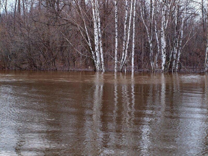 Сливаются разноцветные воды двух рек P4271150