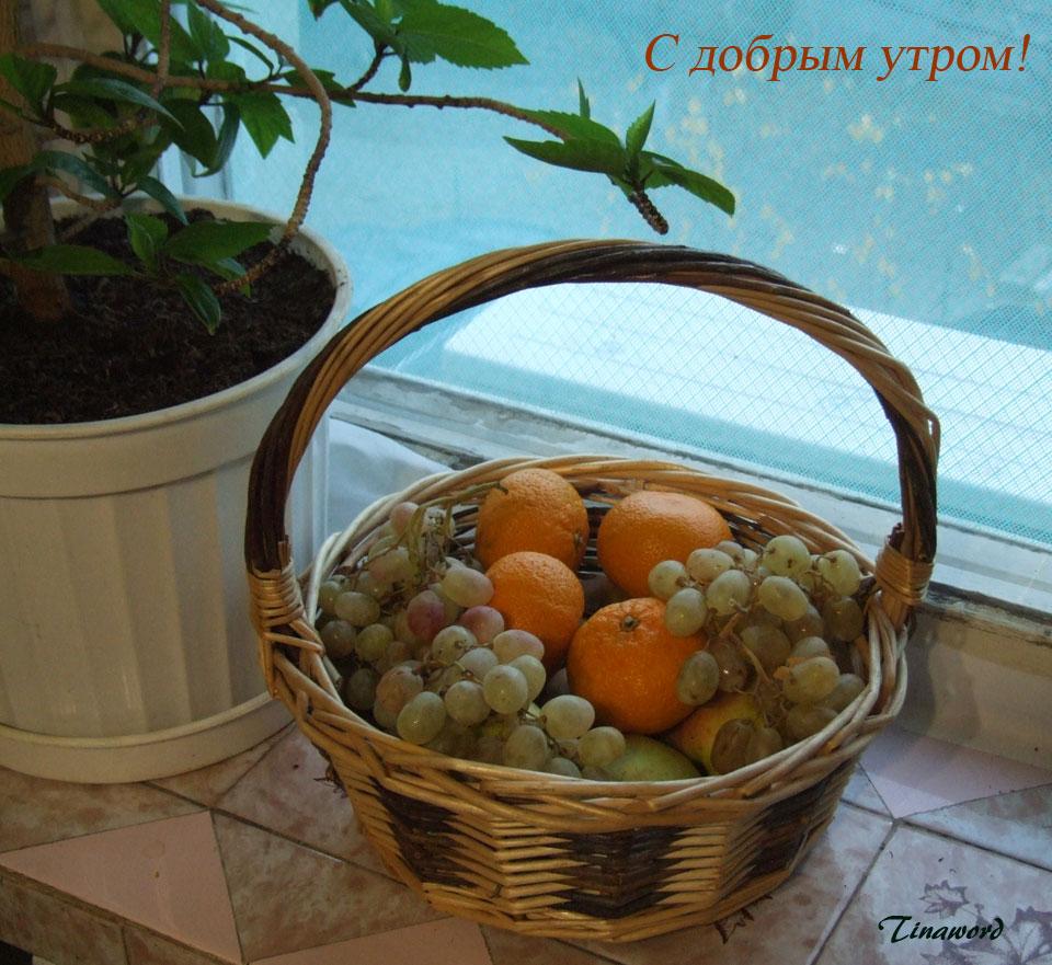 фрукты-7.jpg