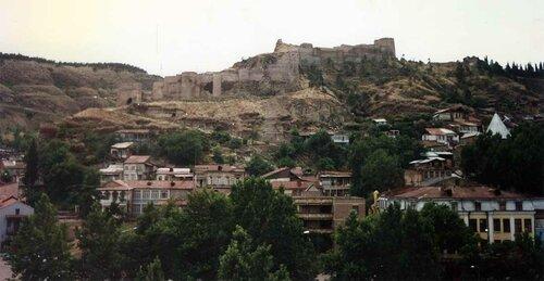 Закаблуцкая Елена, вид на крепость Нарикала