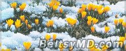Психологи советуют — как дожить до весны