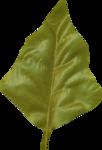 KAagard_WinterWonderland_Leaf1.png