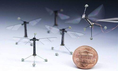 Создан самый маленький робот