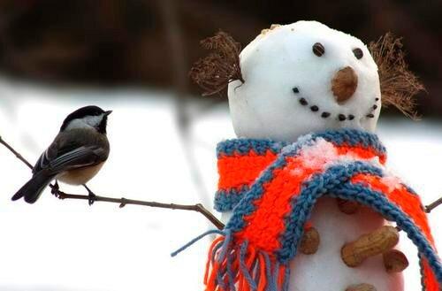 Праздник снеговиков