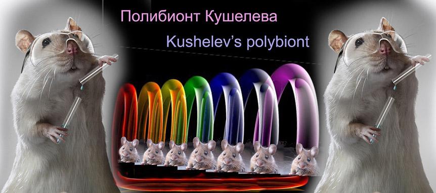 http://img-fotki.yandex.ru/get/6435/158289418.50/0_9ee29_986bc479_orig.jpg
