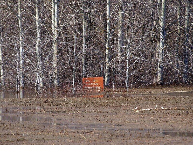 Табличка пить воду и купаться запрещено! P5021679