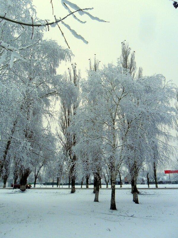 Снег свежий и недолговечный