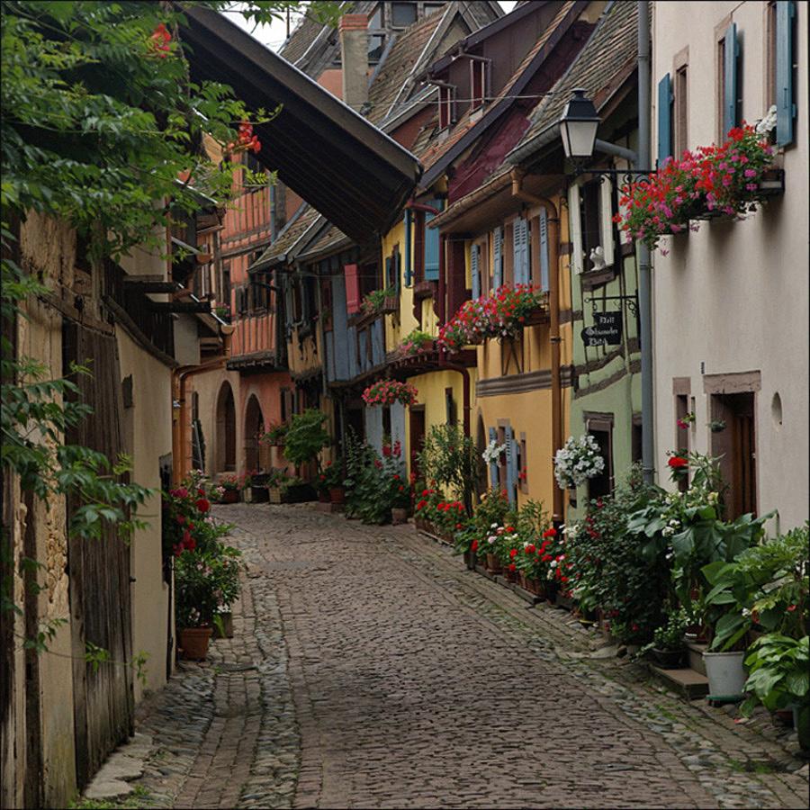 Alsace - Eguisheim (33).jpg